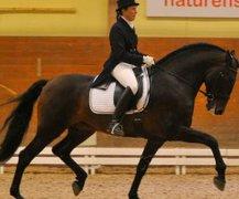Championatet 2011 -foto Natalie Lindholm